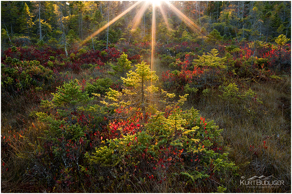 Kurt Budliger Photography | Vermont Photographer specializing in landscape and nature photography, active lifestyle, fly fishing, wedding photography, fine art prints and digital photography workshops